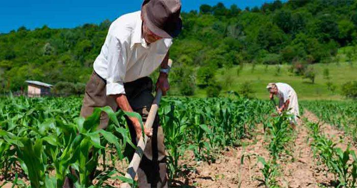 Direito Agrario Ambiental