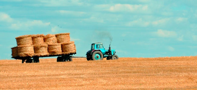 Perdendo Minha Propriedade Rural Devido A Ausencia Da Funcao Social